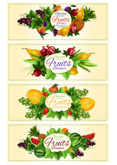 Fruit and berry banner set for food design