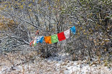 Tibetian religious flags in Huanglong National Park near Jiuzhaijou - SiChuan, China