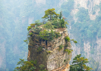 Top of rock column (Avatar rocks). Zhangjiajie National Forest Park was officially recognized as a UNESCO World Heritage Site - China