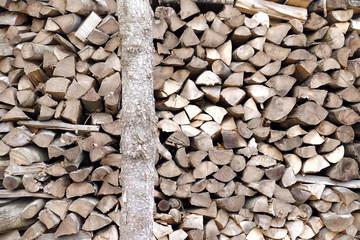 Stack of firewood, closeup