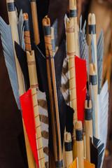 Historical set of old wooden arrows with bright plumage