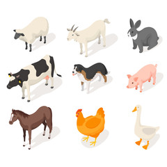 Isometric 3d vector set of farm animals.