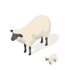 Isometric 3d vector illustration of sheep