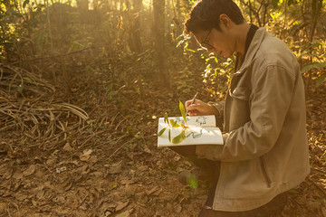 Botanists are taking note of the plants found in the tropical fo