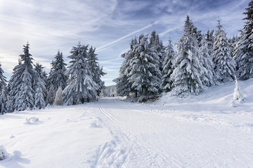 Winter road in mountains. Trees covered with fresh snow, clouds in the blue sky. Groomed ski trails for cross-country in Karkonosze, Giant Mountains, Poland.