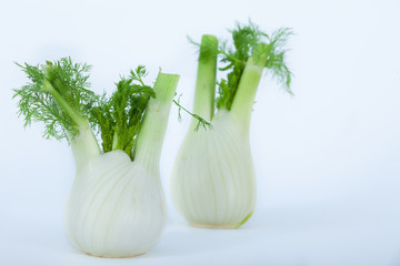 Two Fresh fennel bulbs on white background