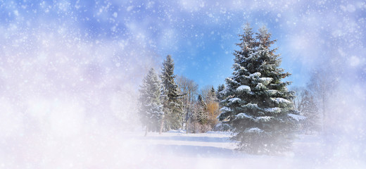 Winter background with snowy trees and snowflakes