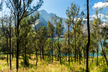 """View through the crater forest onto the lake with the summit in the background, Volcano """"Gunung Rinjani"""", Lombok, Indonesia."""