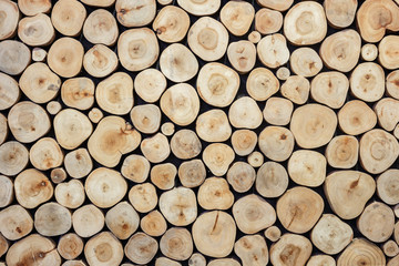 Round wood log texture can use for background. Interior decorati