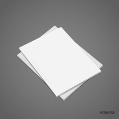 Blank catalog, magazines,book mock up. Vector illustration