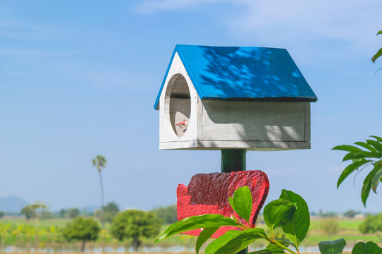 White birdhouse and blue roof under a tree in a sunny day. Peace and relaxation Concept.