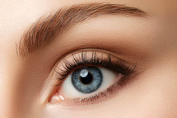 Close up view of beautiful blue female eye