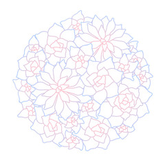Line art succulent plant round composition on white background