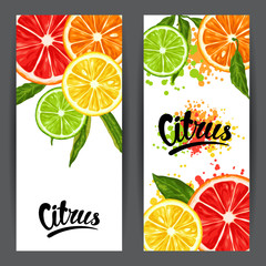 Banners with citrus fruits slices. Mix of lemon lime grapefruit and orange