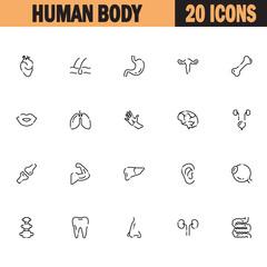 Human body icon set