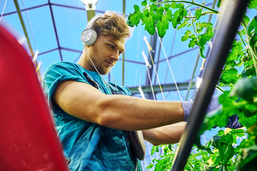 Friendly farmer working on hydraulic scissors lift platform in greenhouse