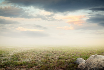 Simple beautiful surreal landscape with grass on misty sky background Wall mural