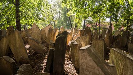 Jüdischer Friedhof in Prag