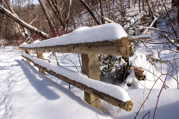 Snow-covered cedar rail fence