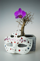 Dry bonsai tree with flower and mask