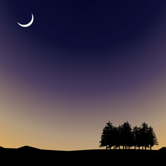 Vector Night time sky, nature landscape with moon and trees