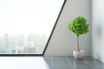 Modern room with plant