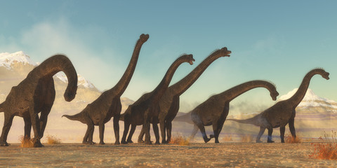 Brachiosaurus Dinosaur Herd - A Brachiosaurus dinosaur herd pass through a dry desert area in the Jurassic Period of North America.