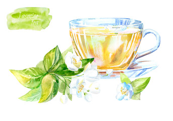 Glass cup of a Jasmine tea. Hot drink image. Watercolor hand drawn illustration.