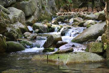 Fototapeta Górski strumień