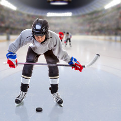 Junior Ice Hockey Player in Crowded Arena. Focus on player and shallow depth of field on background.