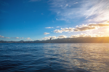 Shore view at Azores from water of Atlantic ocean at sunset time. Seagull flying over water surface
