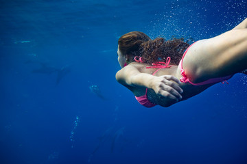 Girl underwater in Atlantic ocean swimming with wild dolphins