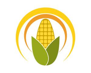 corn harvest icon
