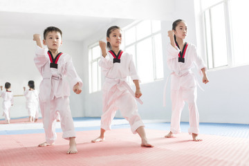 Little children practicing Tae Kwon Do