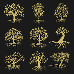 Black vector tree silhouettes with leaves and roots