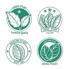 Wall Mural - Vector mint leaf logo icons or menthol spearmint labels