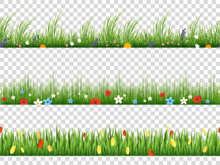 Vector green grass and spring flowers nature border patterns on transparent background illustration