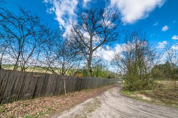 Rural road and wooden fence, spring landscape
