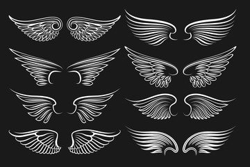Wings emblem black elements. Vector angels and birds winged labels