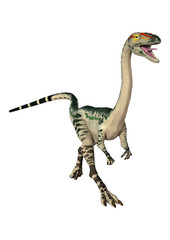 3D Rendering Dinosaur Coelophysis on White