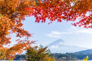 Maple leaf and Mt.Fuji