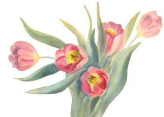 rose tulips isolated watercolor