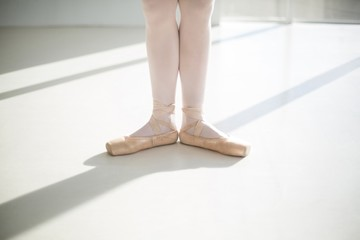 Low section of ballet dancers feet performing ballet dance