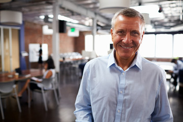 Portrait Of Mature Businessman In Modern Open Plan Office