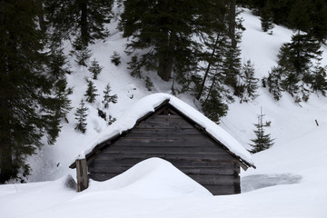 Old wooden hut covered with snow in winter forest at gray day