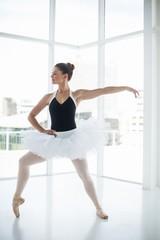 Ballerina practicing ballet dance
