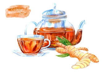 Glass cup and teapot of a ginger tea. Hot drink image. Watercolor hand drawn illustration.