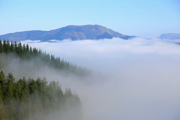Aluminium Prints Blue paisaje niebla montaña país vasco U84A1044-f17