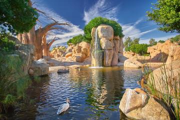 In de dag Baobab Valencia Zoo - Bio Parc