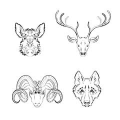 Set of animals sketches: deer,